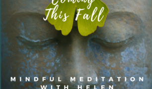 Meditation-coming this fall